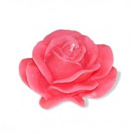Bougie Eustoma Grandiflorum Rose